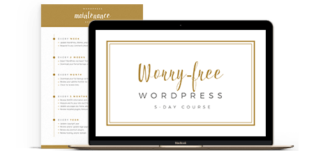 Ali Rand Web Design Home Page Worry Free WordPress Course with Schedule