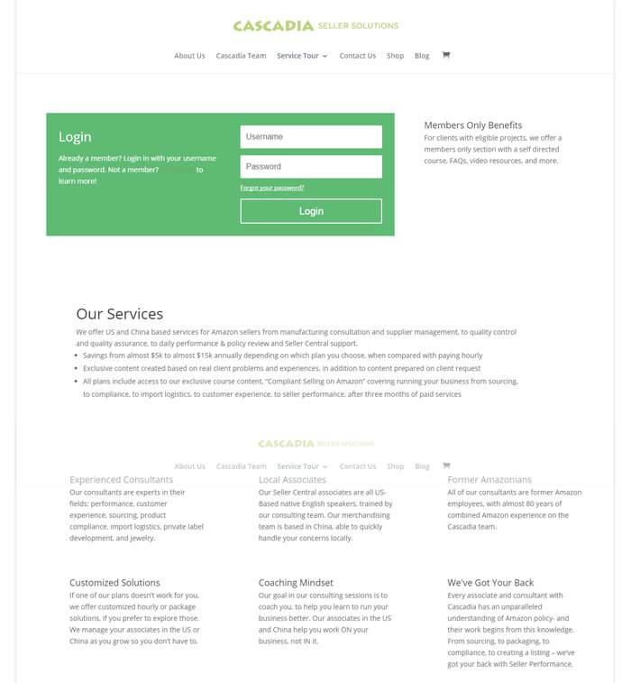 original Cascadia Seller Solutions services page before website redesign by Ali Rand