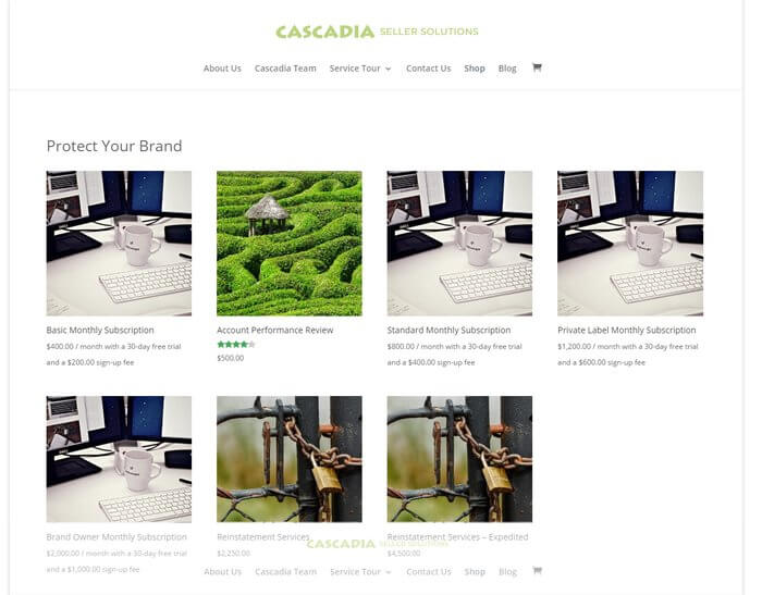 original Cascadia Seller Solutions shop page before website redesign by Ali Rand